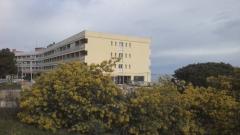 Centre Bouffard-Vercelli Cerbère, Terrasse