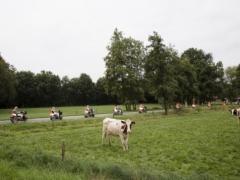 De scootmobielclub op vakantie in Eibergen, Gelderland. Foto Peter de Krom NRC2001WEBAPP_scoot04-568x426-484x363.jpg