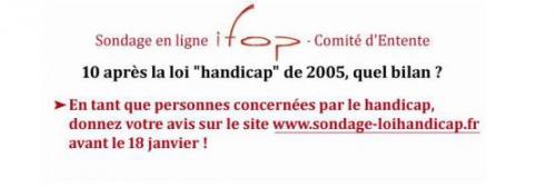 Capture écran Sondage IFOP Loi handicap, jpg
