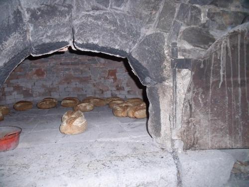 Fournil, pain au feu de bois, Montdonnet
